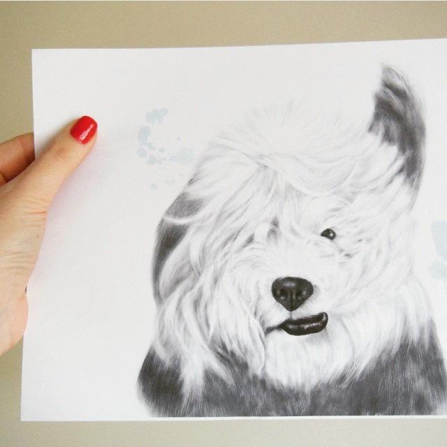 lamina-A4-bob-polarite-ilustracion-maow-design-shop-3