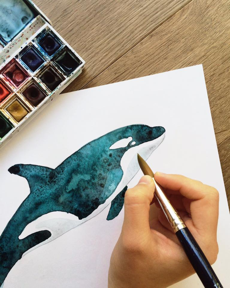 lore-illustration-killer-whale-maow-design-blog