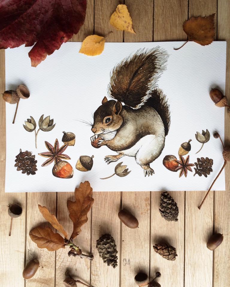 lore-illustration-squirrel-nuts-maow-design-blog