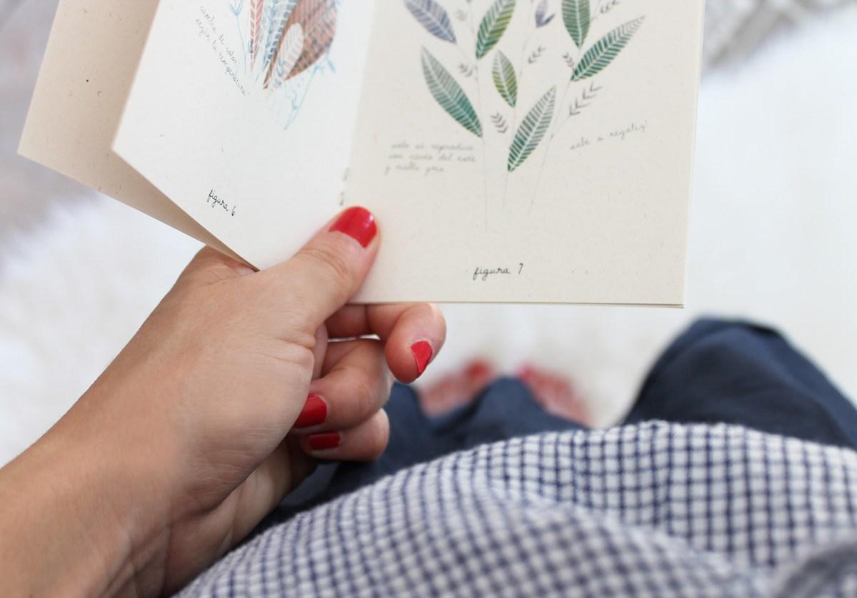 botanical-eva-carot-elgatoconpajarita