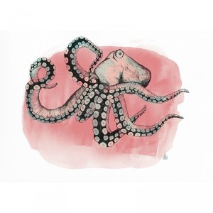 ilustracion-pulpo-rosa-joana-santamans-maow-design-shop