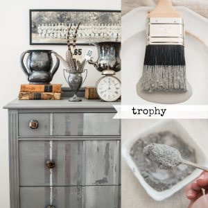 trophy-miss-mustard-seed-milk-paint-maow-design-shop