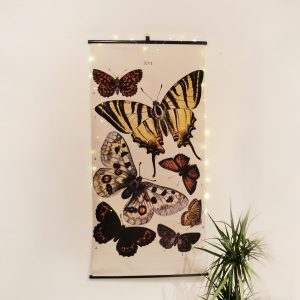 lienzo-mariposas-maow-design-shop