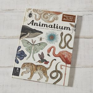 libro-animalium-maow-design-shop