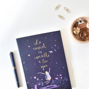 cuadernos-de-cuento-lo-esencial-tapooki-maow-design-shop