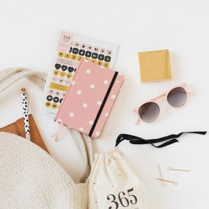 agenda-charuca-semanal-2019-mini-rosa-maow-design-shop